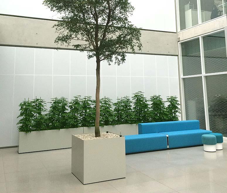 Foyer Empfang Innenraumbegrünung, akzente raumbegrünung