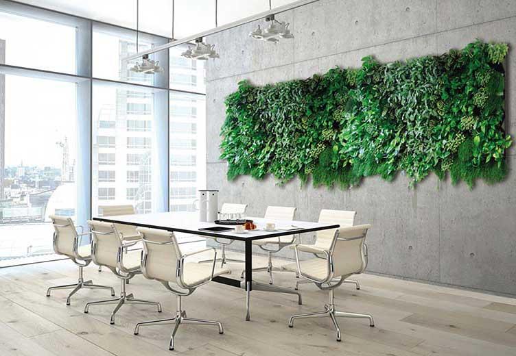 Grüne Wand Konferenzraum, akzente raumbegrünung