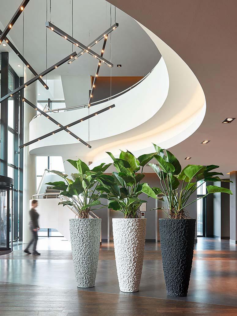 Innenraumbegrünung Foyer Empfang Pflanzsäule, akzente raumbegruenung