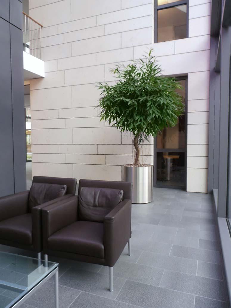 Innenraumbegrünung Foyer Empfang, akzente raumbegrünung