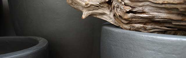 Keramikgefäßse Innenraumbegrünung, akzente raumbegrünung