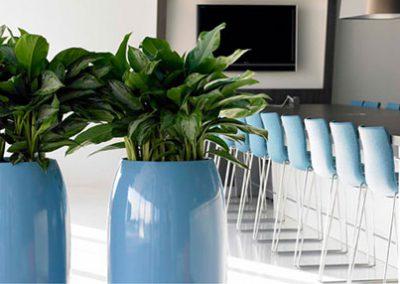 Mitarbeitermotivation durch Pflanzen