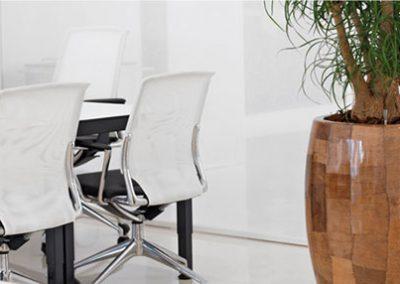 Pflanzgefäße für das Büro