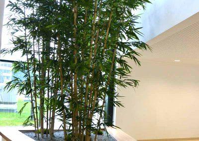 Bambus Kunstpflanze Im Pflanzbecken Akzente Raumbegruenung