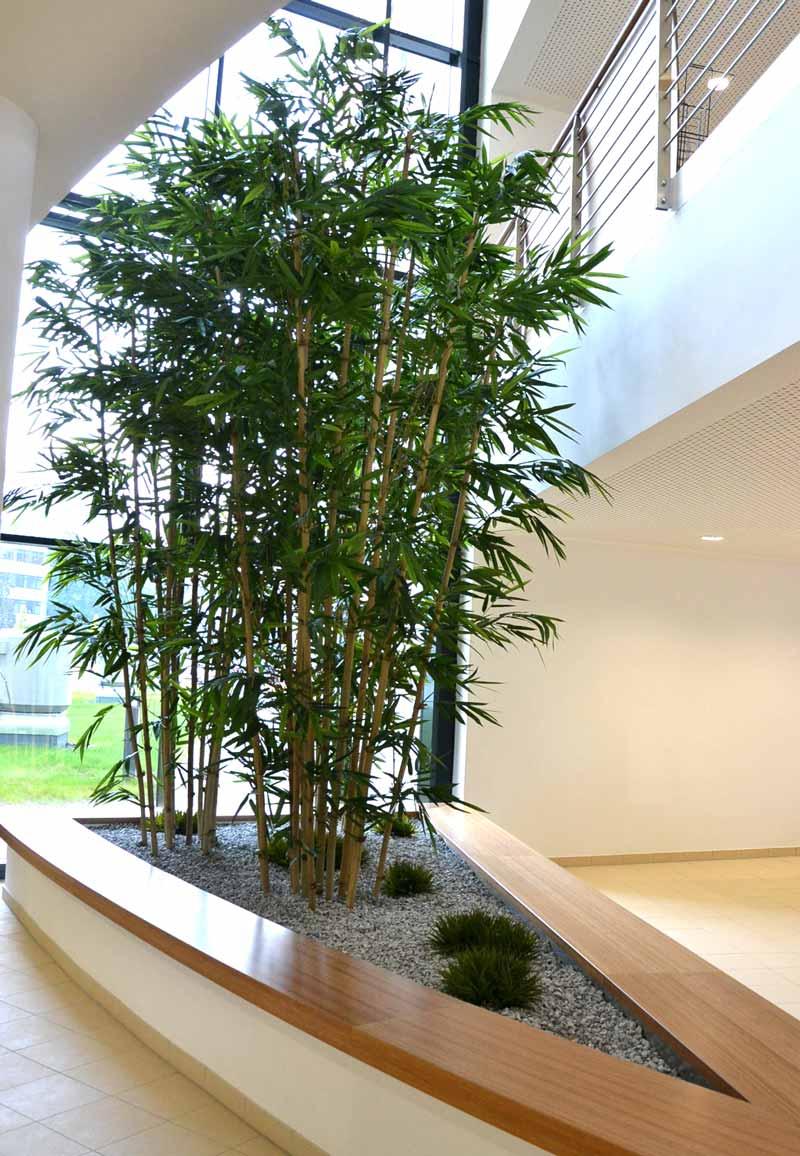 Begrünung von Einbaubecken mit Textilpflanzen, Bambus und Gras