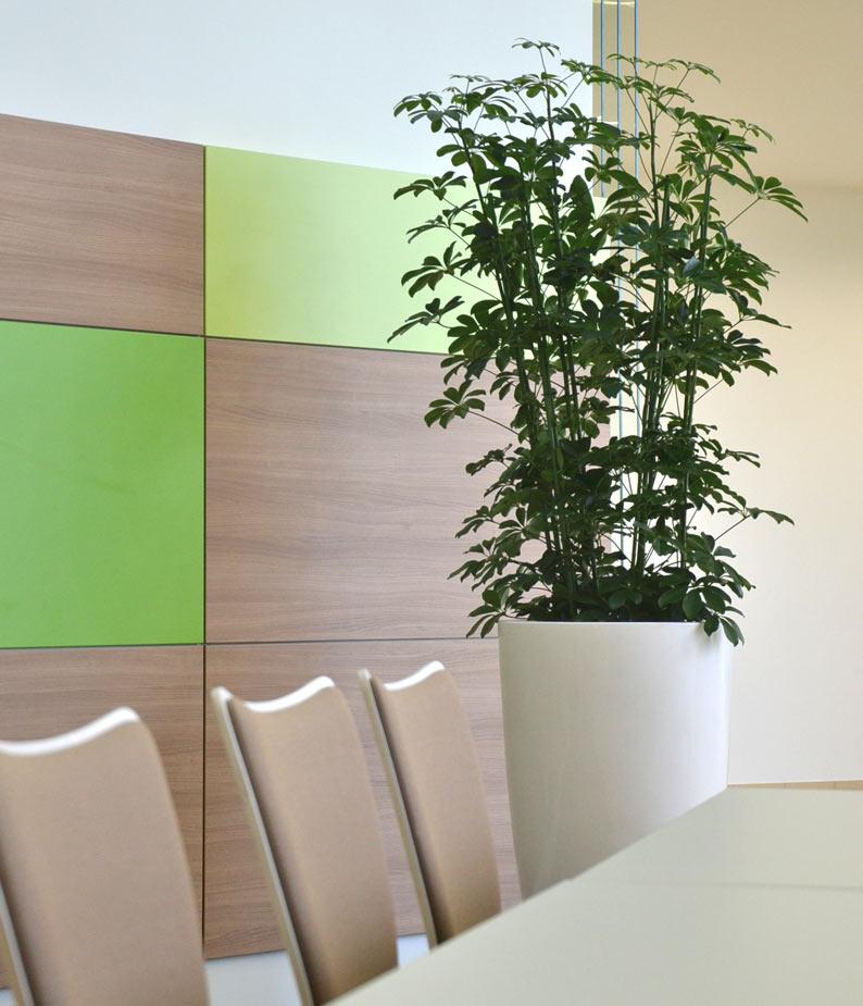 Begrünung einer Kantine mit Hydrokulturpflanzen in Pflanzvasen