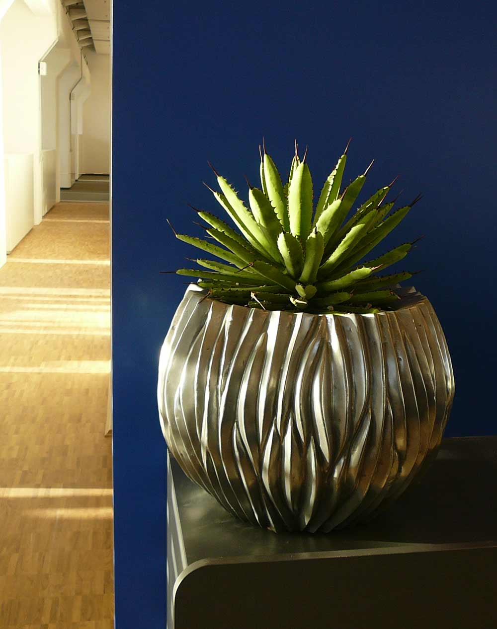Pflanzgefäß auf Empfangstresen, Agave Zimmerpflanze