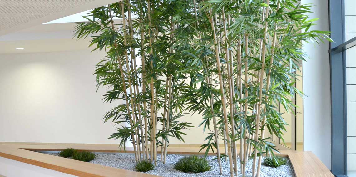 Große Pflanzebecken im Treppenhaus bepflanzt mit Bambus (Textilpflanze)
