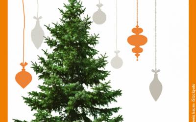 Unser Weihnachtsbaumservice startet …
