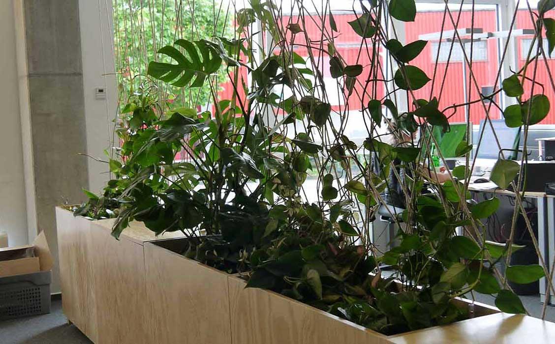 Strukturierung der Arbeitsbereiche mit grünen Raumteilern