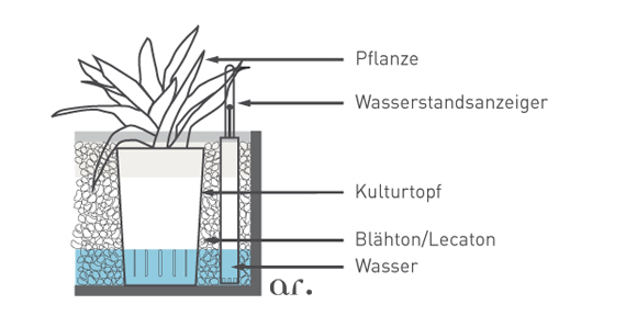 Hydrosystem Bürobegrünung, akzente raumbegrünung