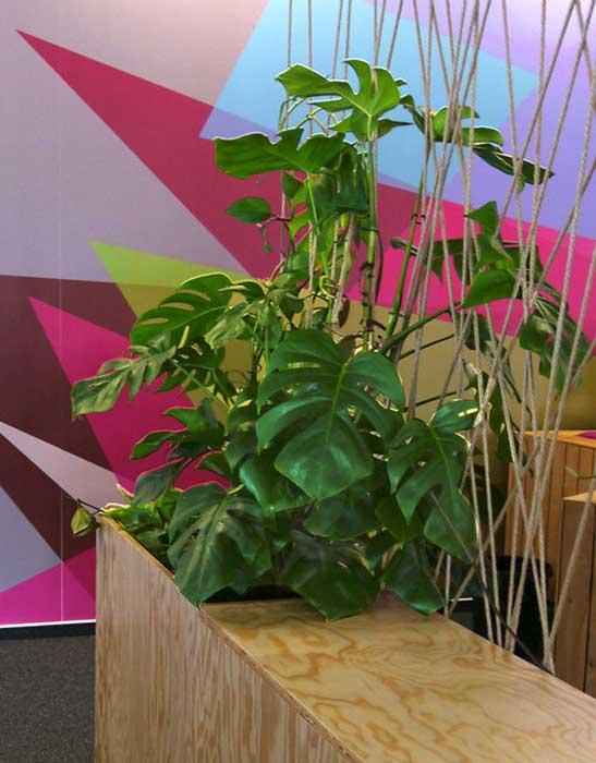 Pflanzen mit positiven Effekt - Schallminimierung, Verbesserung Raumklima und Schadstoffminimierung