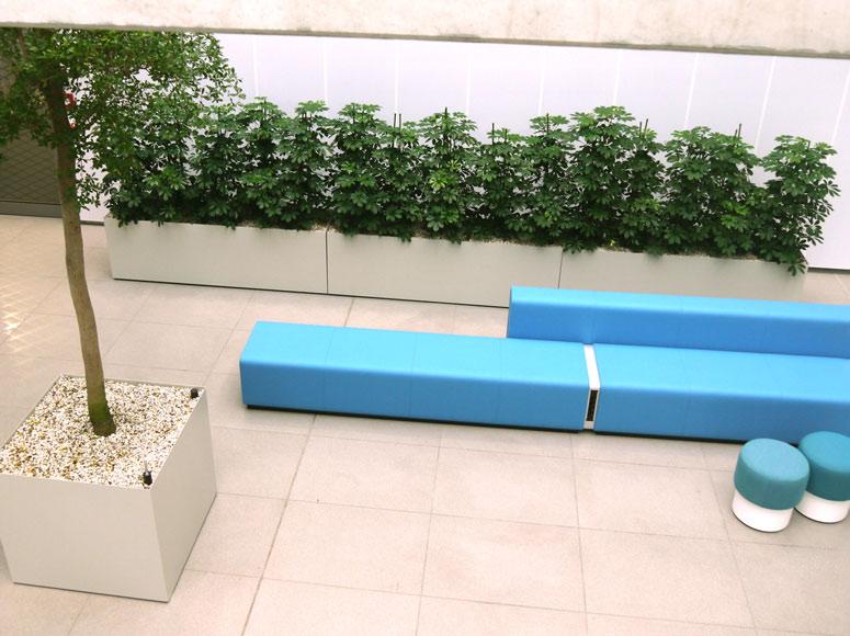 Pfanzbecken aus Edelstahl (lackiert) mit Hydropflanzen bepflanzt, akzente raumbegrünung
