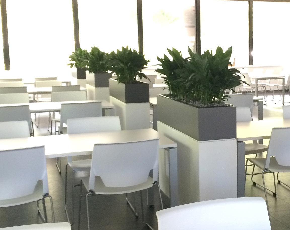 Pflegeleichte Pflanzen strukturieren die Sitzbereiche und sorgen für eine entspannte Athmosphäre in der Pause