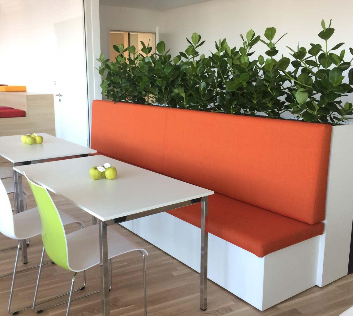 Raumteiler mit Hydrokulturpflanzen bepflanzt in einer Firmenkantine