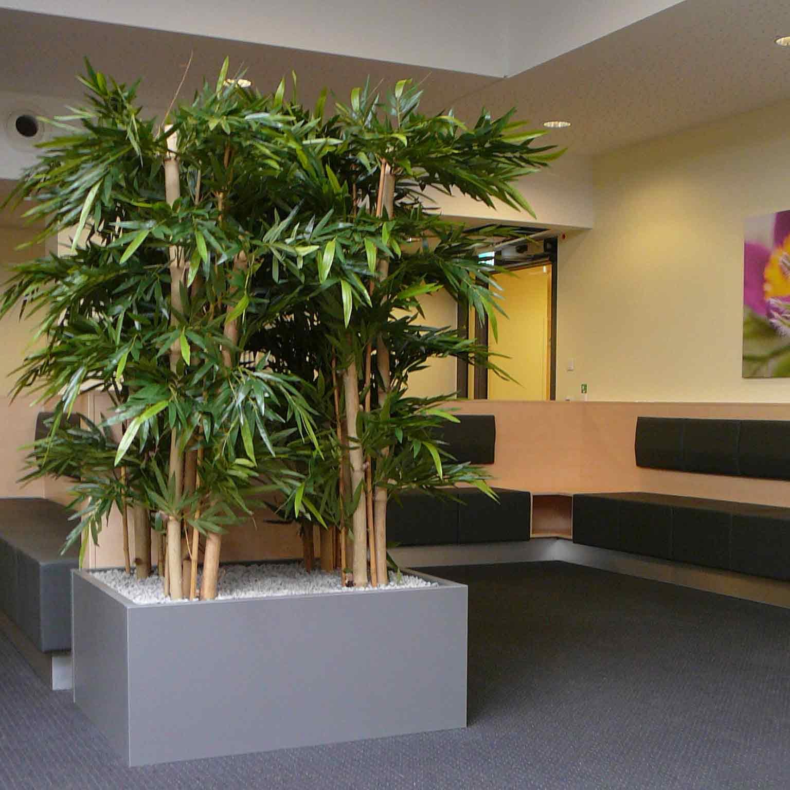 Pflanzbecken mit Bambus - Kunstpflanze, akzente raumbegrünung