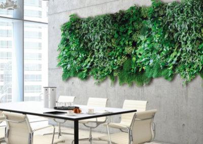 Pflanzenwand Innenbereich