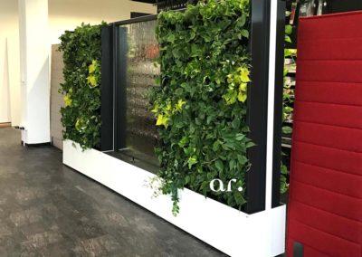 Akzente Raumbegruenung Raumteiler Pflanzenwand WorkingGreen