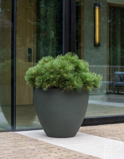 Pflanzkuebel Aussenbereich Pottery Pots Refined