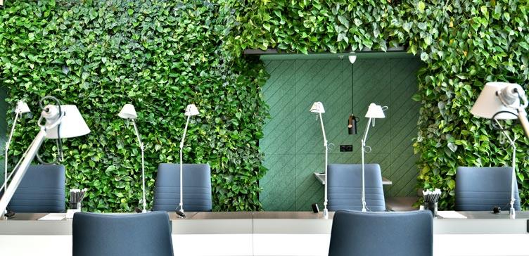 Vertikale Pflanzenwand  im Coworking Office