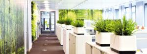 airy Biofilter für gesunde Büroluft