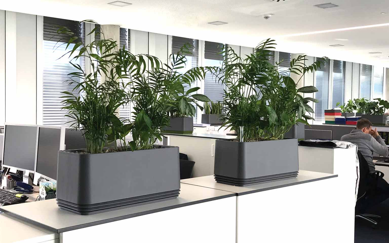 Gesunde Büroluft durch airy Blumentopf