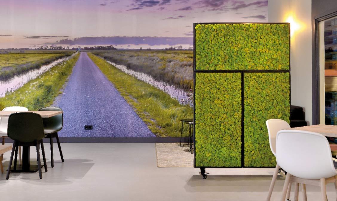 Islandmoos Pflanzenwand Raumakustik, akzente raumbegrünung