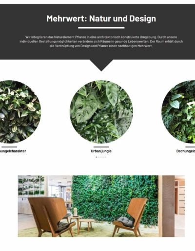 Working Green Livingwall Pflanzenwand Akzente Raumbegruenung