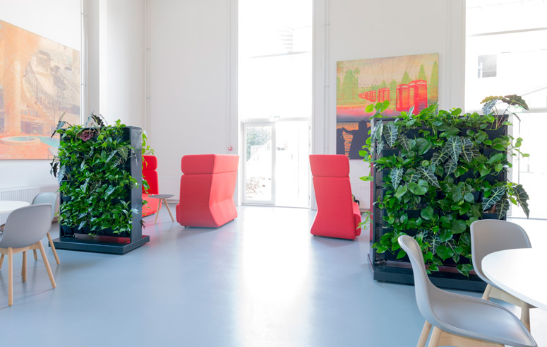 Grüne Raumteiler, akzente raumbegrünung