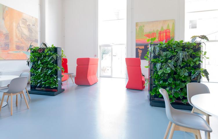 Abstand halten - Raumtrennung mit Pflanzen