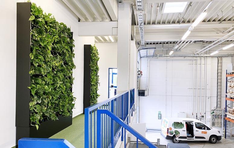 Pflanzen Im Sideboard, bepflanzte Möbel, akzente raumbegrünug
