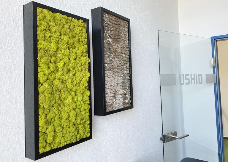 Raumtrenner mit Zimmerpflanzen, akzente raumbegrünung