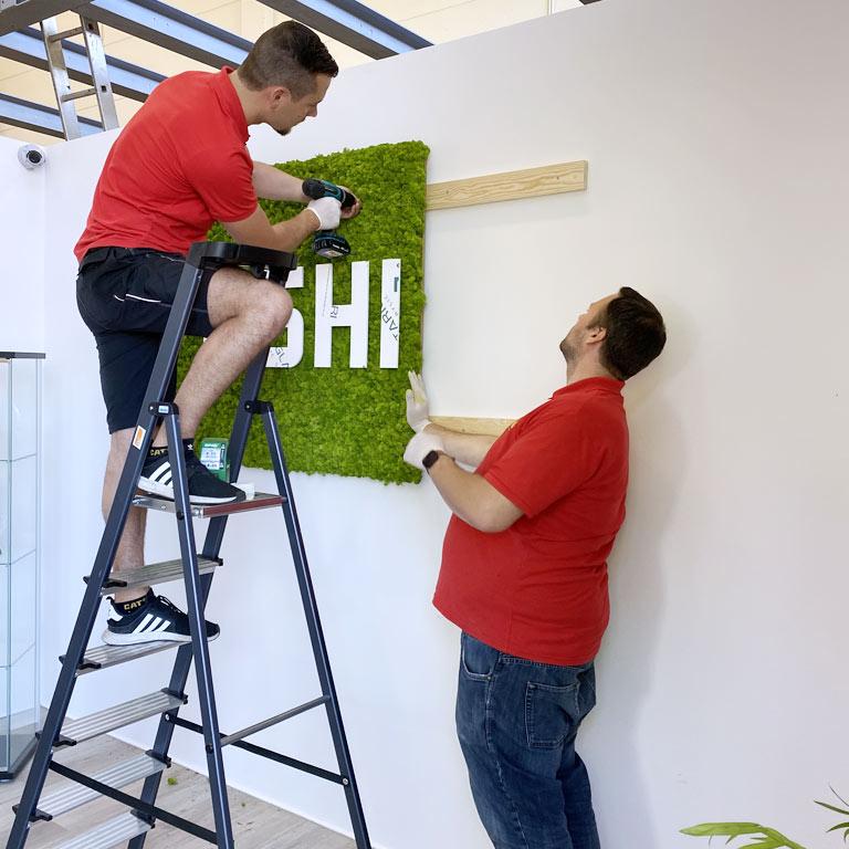 Bürobegrünung Pflanzenwand als Raumtrenner, akzente raumbegrünung